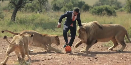 playing-with-lions