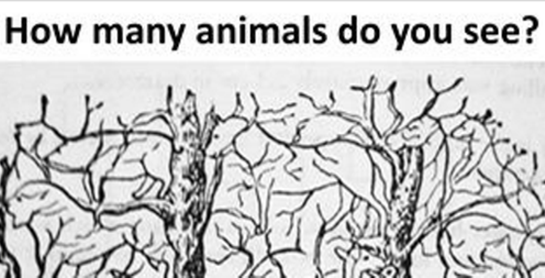 How Many Animals Do You See in This Picture? – ViralSlot